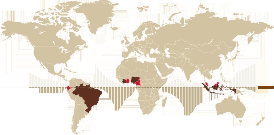 mapa mundi con las zonas de cultivo del cacao