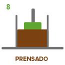 paso-8