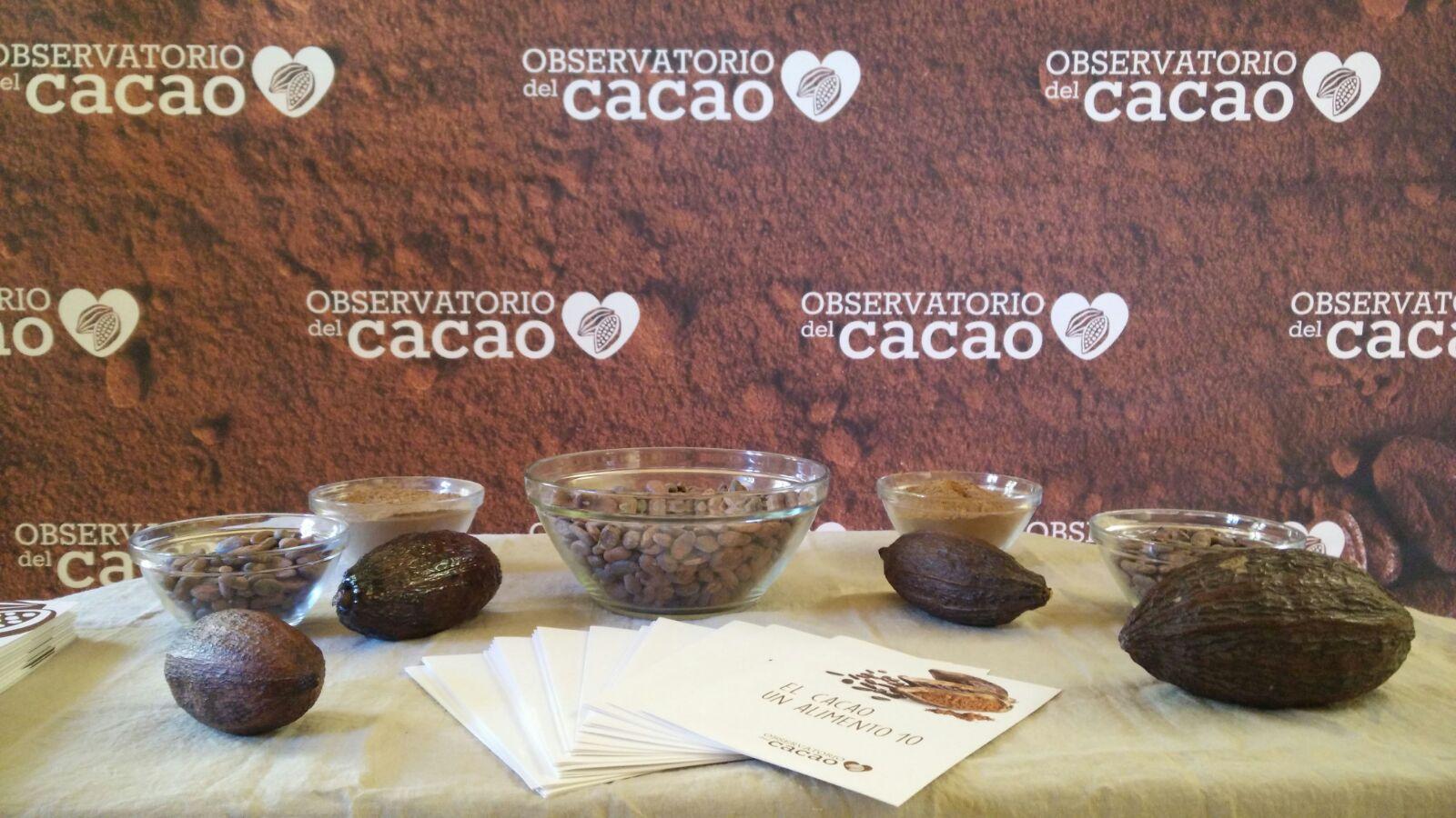 Los componentes del cacao y su papel en la diabetes en el II Workshop INSA